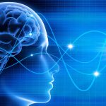 Neurofeedback dynamique : maintenir le cerveau en forme